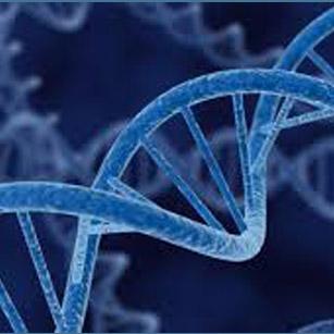Молекулна биология